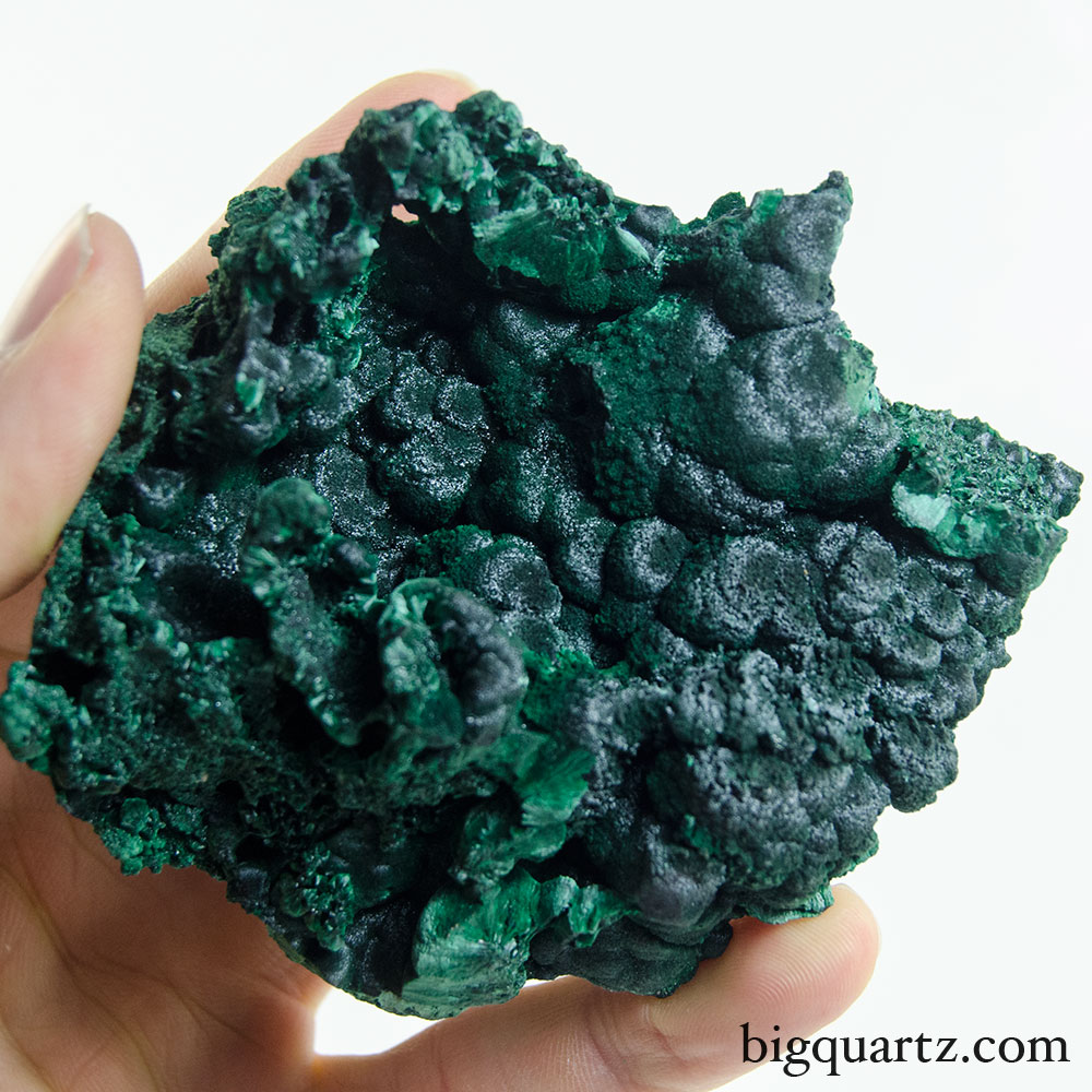 Fibrous and Botryoidal Malachite Crystal Specimen (Congo, #9622) 283 grams