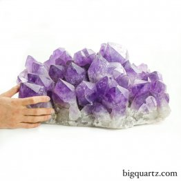 Large Amethyst Crystal Cluster (Bolivia #55) 61 pounds