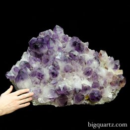 Large Amethyst Crystal Cluster (Bolivia #58) 215 pounds