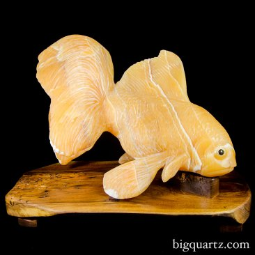 Large Orange Calcite Crystal Goldfish w/ Stand (Peru #8477) 50 pounds